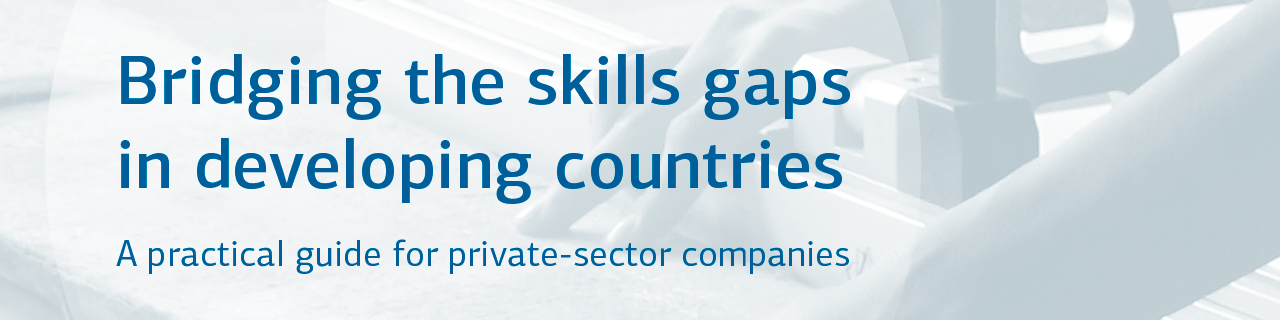 Bridging the Skills Gaps