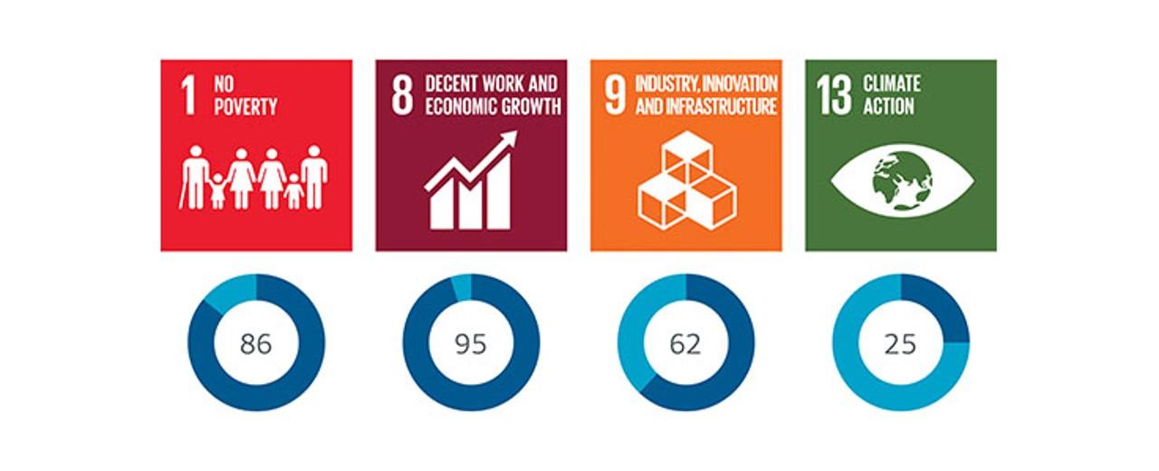 SDG contribution made by DEG's 2018 portfolio