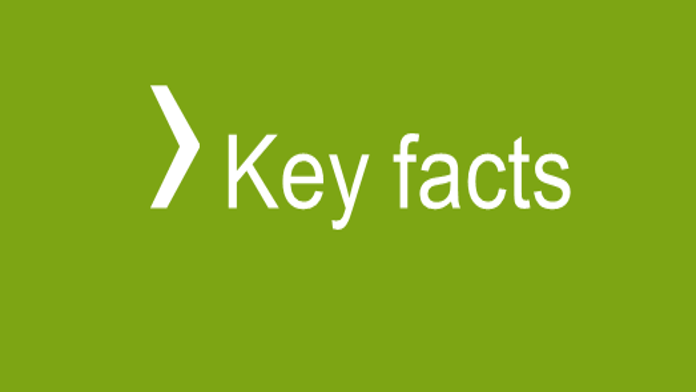 Icon Key Facts