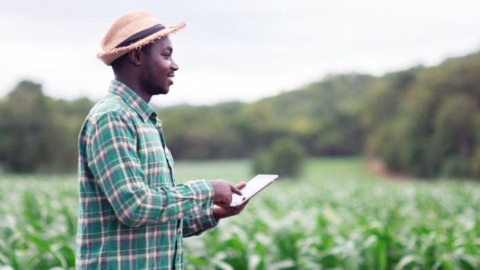 African Farmer stand in the green farm with holding tablet pc