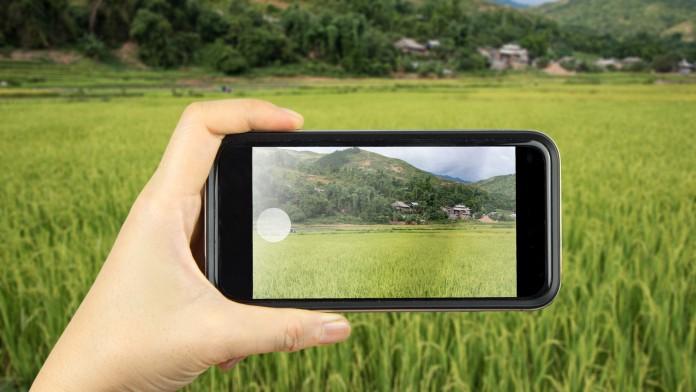 Smartphone, Landwirtschaft, App, nachhaltige Lieferketten