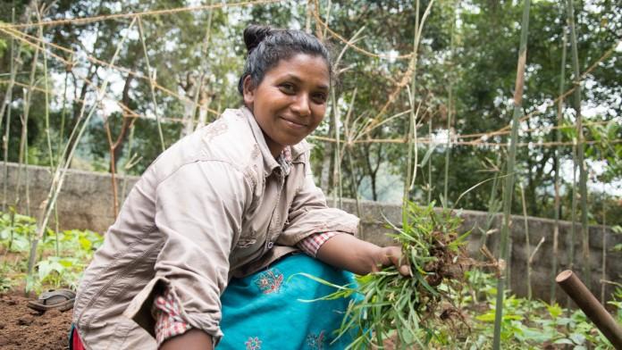 Mit develoPPP.de können Pilotvorhaben oder Umwelt- oder Qualifizierungsvorhaben finanziert werden, ein Beispiel ist das Bio-Gewürzprojekt von Ecoland in Indien.
